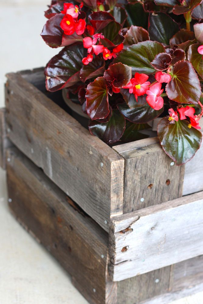 1000 ideas about pallet planter box on pinterest pallet. Black Bedroom Furniture Sets. Home Design Ideas
