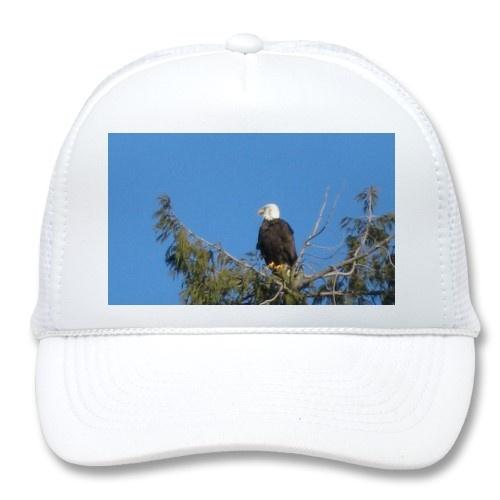 Bald Eagle Hat  only $15.85