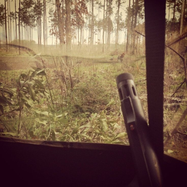 7 Mistakes Beginner Turkey Hunters Make [PICS] - Wide Open Spaces