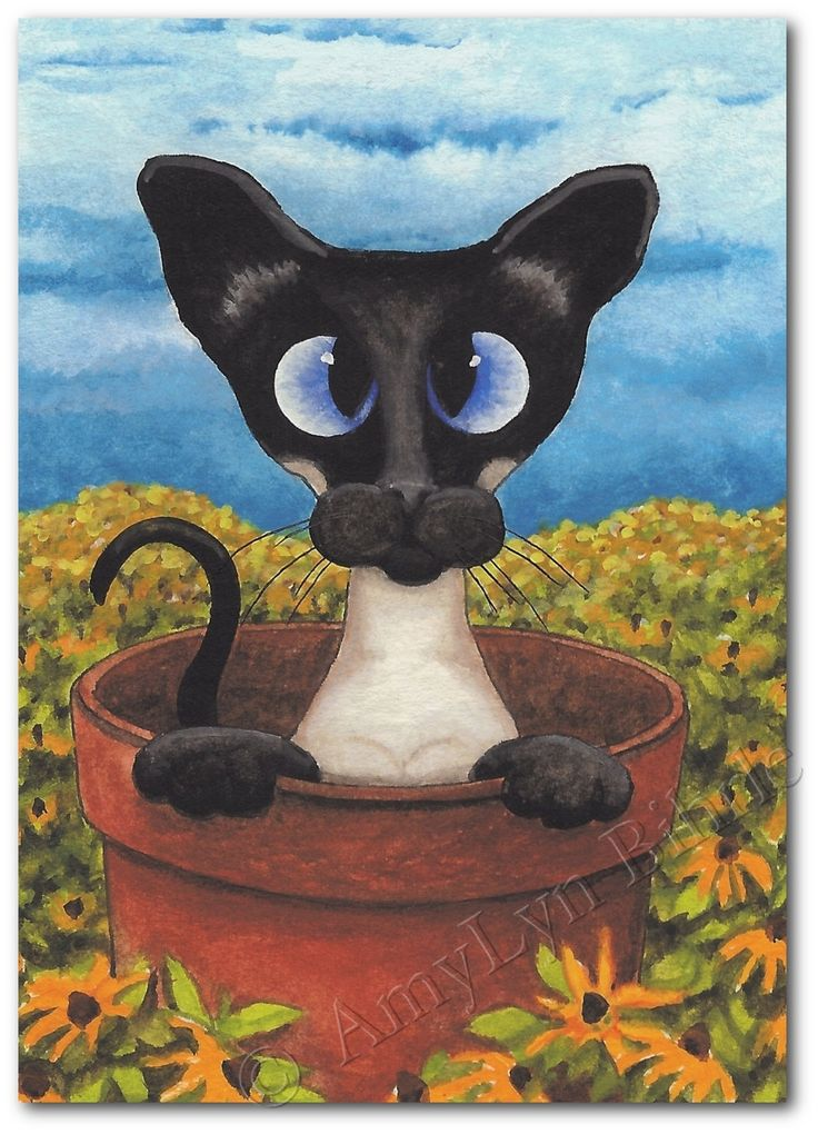 Siamese Cat Flower Pot  Art Prints  ACEOs by by AmyLynBihrle, $8.99