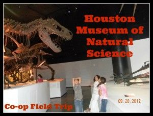 Field trip to the Houston Museum of Natural Science