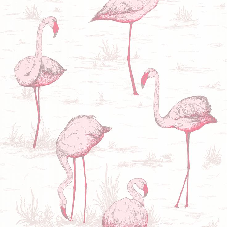 Contemporary Restyled - Flamingos - 95-8045 Cole & Son behang wallpaper behangpapier behang woonkamer behang slaapkamer interieur design