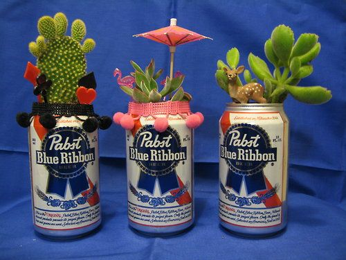 Beer cans gone wild! These upcycled cans are the perfect place to plant your cactuses.