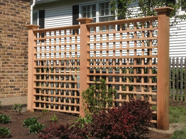Rose trellis trellis rose trellis cedar trellises for Trellis ideas for privacy