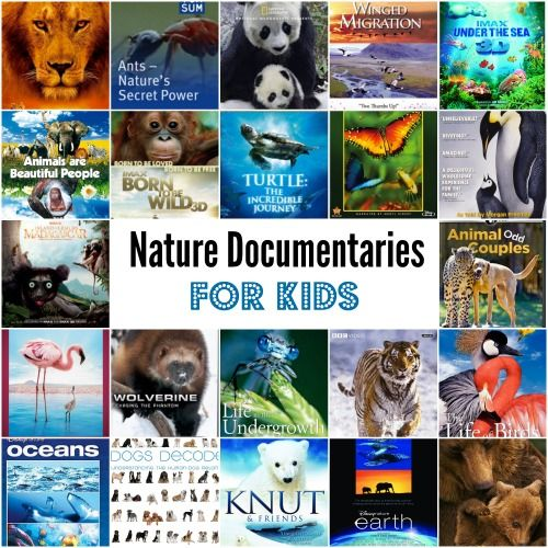 30 nature documentaries for kids - from animals to oceans. We've seen some of these and the rest are being added to our 'must watch' list.