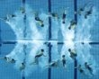Team Switzerland is seen underwater during the Free Combination finals of the European Diving and Synchronised Swimming Championships in Eindhoven May 27, 2012. REUTERS/Michael Kooren