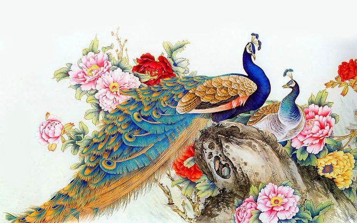 Best-Peacock-Wallpapers-Free-Download.jpg (1680×1050)