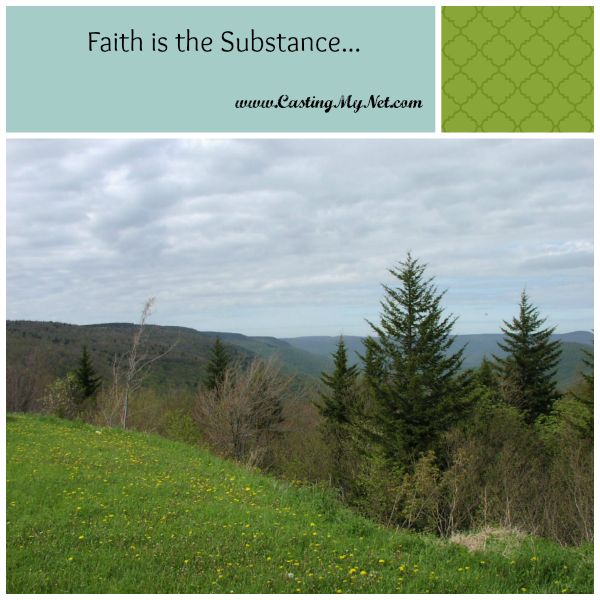 """Do you have faith as substance and evidence of future hope? """"Now faith is the substance of things hoped for, the evidence of things not seen."""" Hebrews 11:1"""