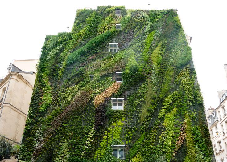 Hanging garden in city #GreenWall #Art