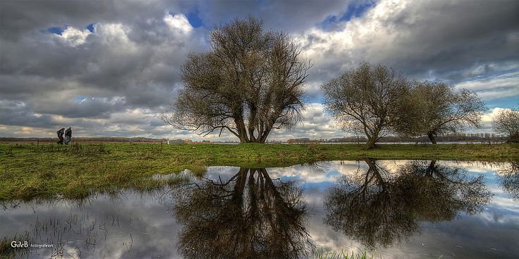 reflections in het Twiske