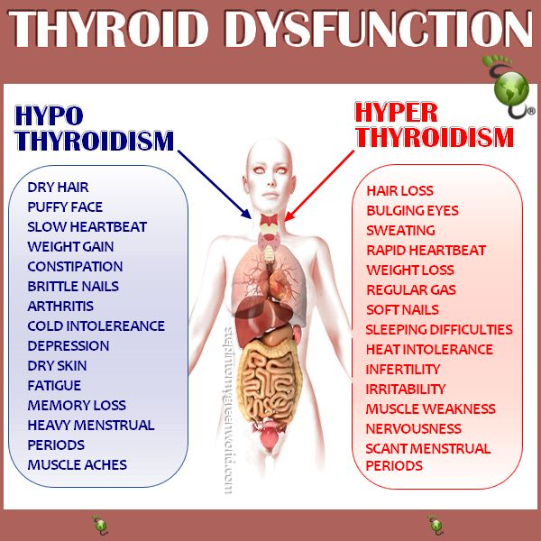 best 25+ thyroid symptoms ideas on pinterest | hypothyroidism, Human Body