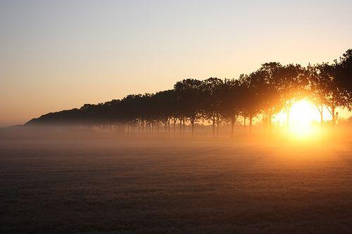 霧の朝焼け