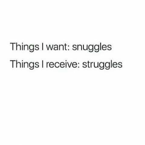 Things I want:snuggles Things I receive: struggles