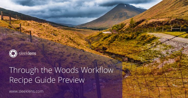 Through the Woods Workflow Recipe Guide Preview