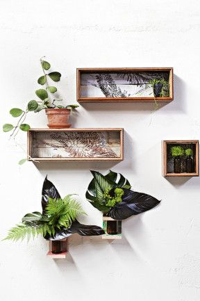 2. Freshen up your wall display with a cluster of cut foliage. Sculptural leaves are perfect for areas that are too dark...