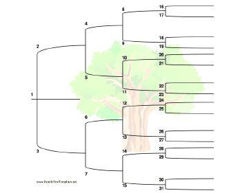 free editable 5 generation family tree template