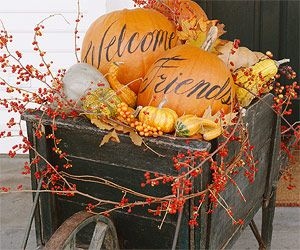 I love pumpkins and gourds and fall decorations