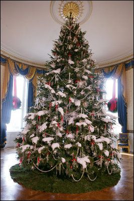 The official White House Christmas tree, an 18-foot Douglas fir tree donated by the Crystal Springs Tree Farm of Lehighton, Pa., stands in the Blue Room of the White House, Thursday, Nov. 30, 2006.