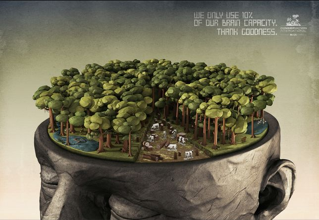 """""""We only use 10% of our brain capacity. Thank goodness"""". For Conservation International by J. Walter Thompson Brazil. #deforestation #forest #cop21 #greatad #savetheplanet"""