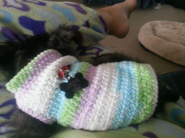 Free Dog Sweater Crochet Pattern THIS LOOKS LIKE IT WILL FIT Mesmerizing Crochet Dog Sweater Pattern Easy