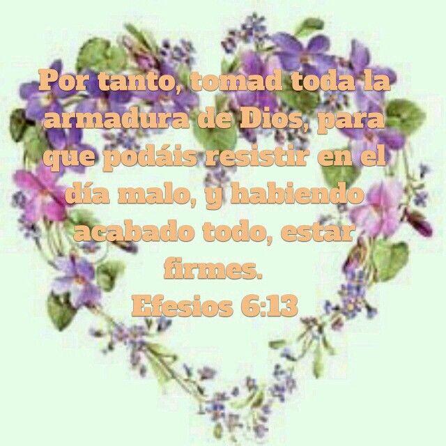 Por tanto, tomad toda la armadura de Dios, para que podáis  resistir en el día malo, y habiendo acabado todo,estar firmes. Efesios 6:13