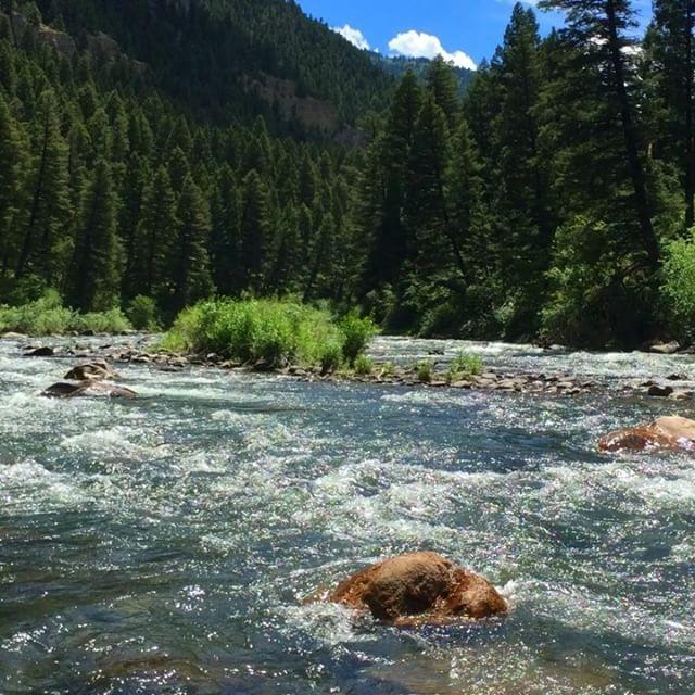 66 best bozeman montana images on pinterest fishing for Bozeman mt fishing