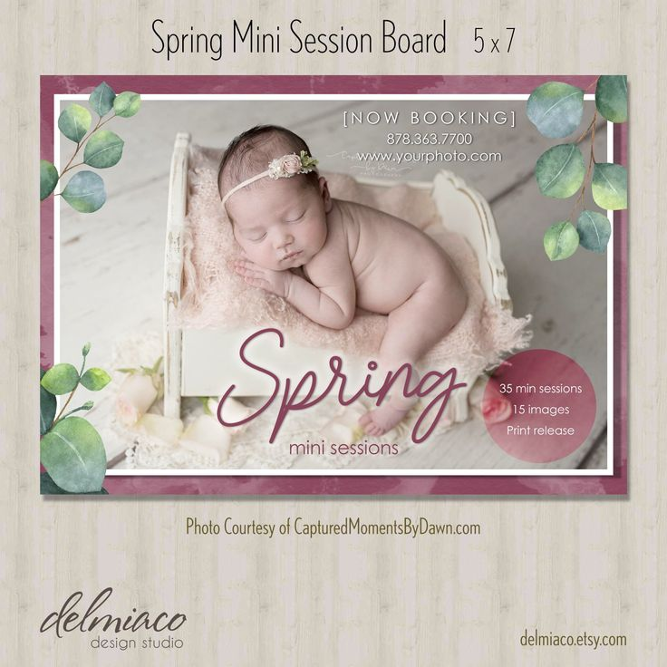 Spring Mini Session Photography Template – Classic Watercolor with Eucalyptus Leaves – Layered Photoshop Template – INSTANT DOWNLOAD