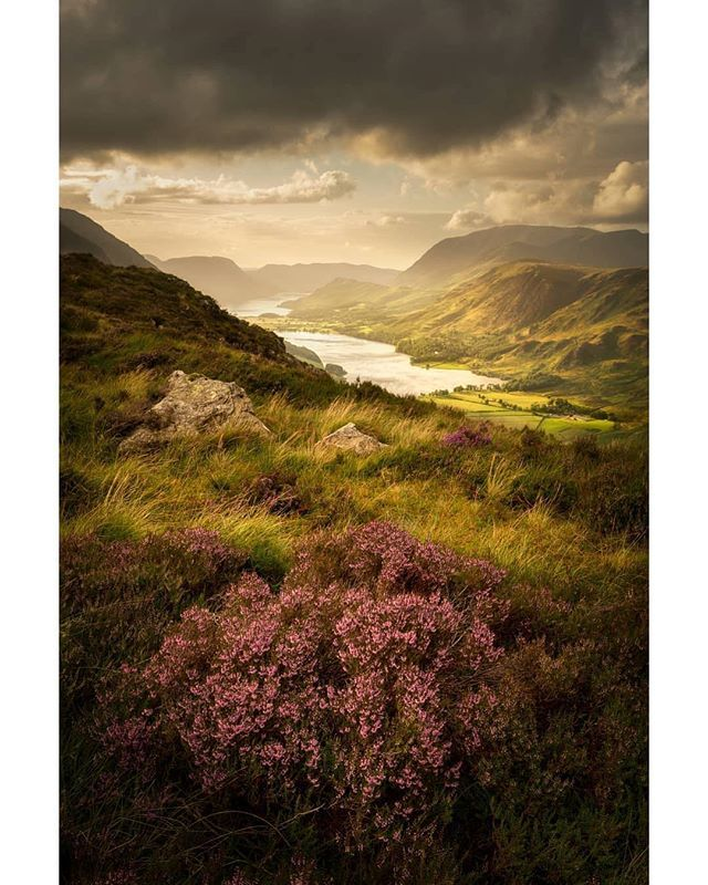 Repost From Stuartmcglennon Well I M Pretty Pleased To Say That Buttermere Bloom Has Won The Sunday Times Landscape Photographers Landscape Cool Landscapes