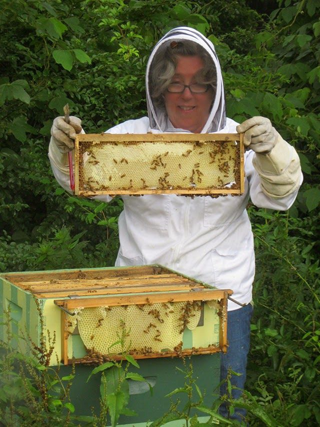 how to become a master beekeeper