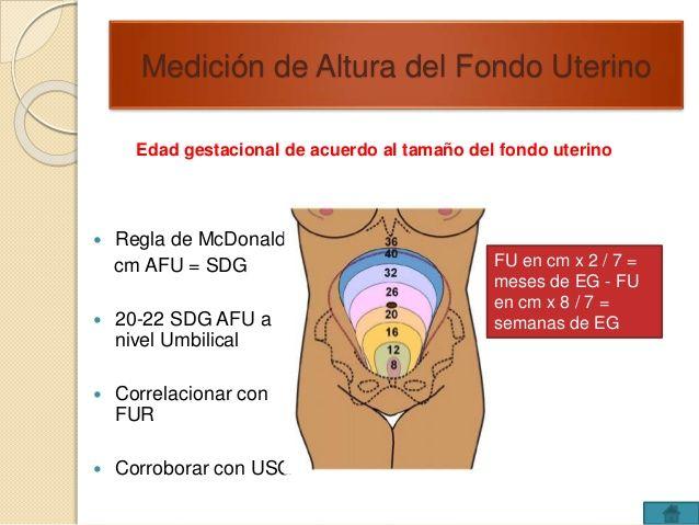 Medición de Altura del Fondo Uterino  Edad gestacional de acuerdo al tamaño del fondo uterino   Regla de McDonald:  cm AF...