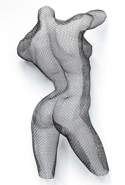 Wire mesh nude by Nikki Taylor