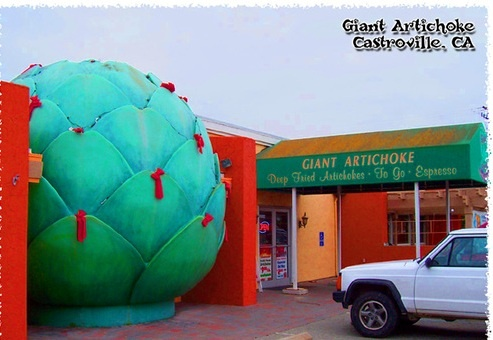 Giant Artichoke        Castroville, California    The giant artichoke of Castroville bulges into the parking lot of a fruit stand and restaurant shopping strip. Like an immense leafy alien head, it seems to grin westward towards the Pacific Ocean and the world's less bountiful regions.    Don't just stop for the photo op; the adjacent Giant Artichoke Restaurant makes fine dishes out of this unsung hero of the garden.