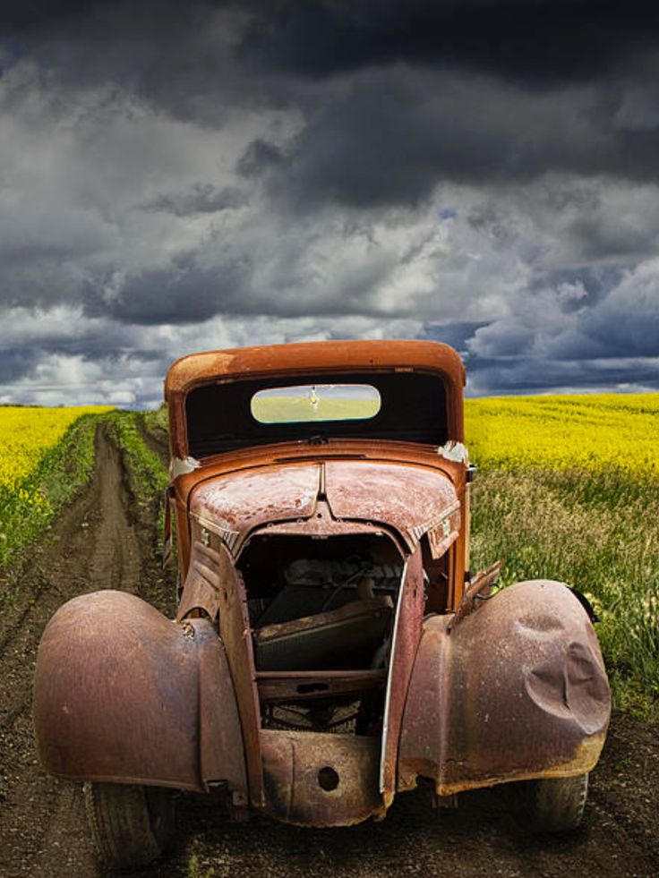 Vintage Chevy Pickup On A Dirt Path Through A Canola Field is a photograph by Randall Nyhof. A Fine Art Photograph of a Vintage Chevy Pickup on a dirt path through a canola field. Source fineartamerica.com