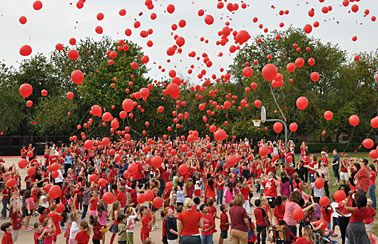 Tons of ideas for red ribbon week