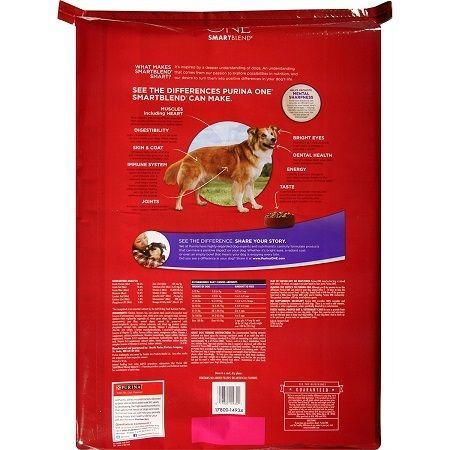Dog Food Reviews Best Senior Formula