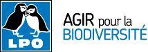 Observation oiseaux en Espagne Pac Donana en avril prochain