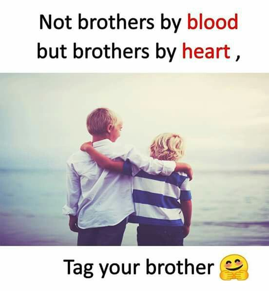 Love U Bro Feelings Brother Sister Quotes Brother Quotes