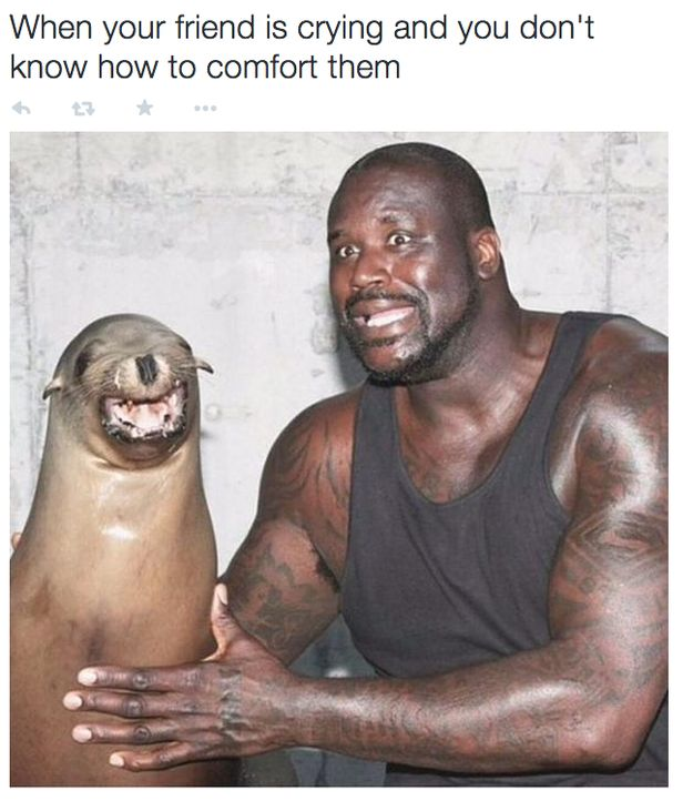 When you comfort them: | 23 Pictures That Perfectly Describe Having A Best Friend