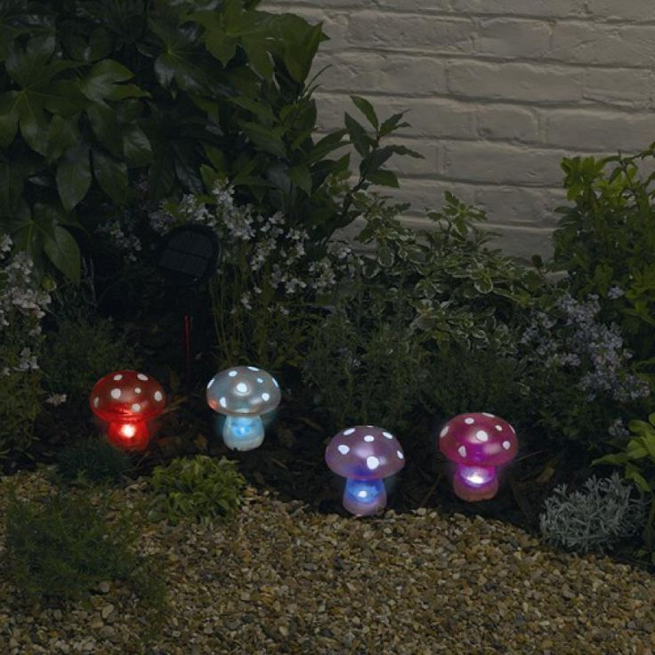 fairy - Outdoor Solar Lanterns