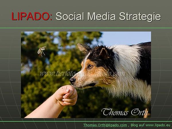 Lipado Social Media Strategie