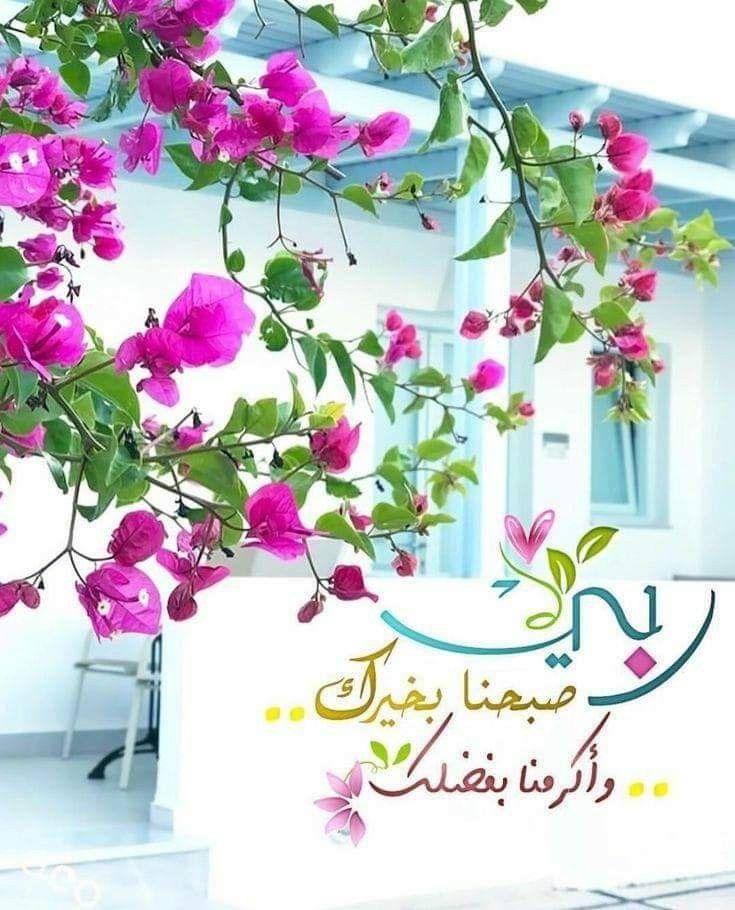 إشراقة الثلاثاء16 7 19 13ذو القعدة1440هجري إشراقة الصباح جعل ﷲ صباحكم مليئا بسكون القلب Good Morning Images Flowers Morning Greeting Beautiful Morning