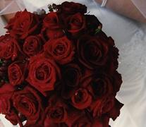 Black Magic Roses By Colin Cowie #red, #design, #pinsland, https://apps.facebook.com/yangutu