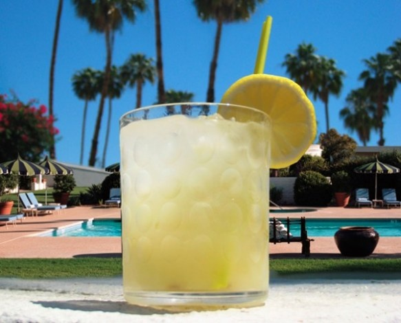 *Lemon Shake-Up* 10 oz. Citrus Vodka with 4 Cups of Lemonade and 1 Cup of Sugar. Blend with ice and serve garnished with lemon or lime.
