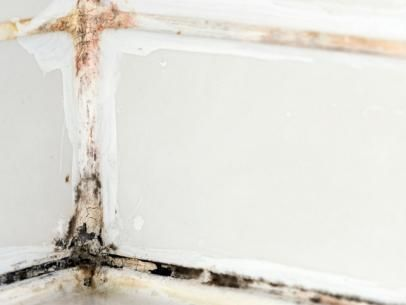 Learn how to remove black mold safely and effectively. 4551 best Black Mold images on Pinterest   Mold removal  Basements