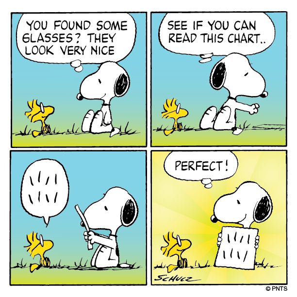 SNOOPY & WOODSTOCK~An eye exam for Woodstock.