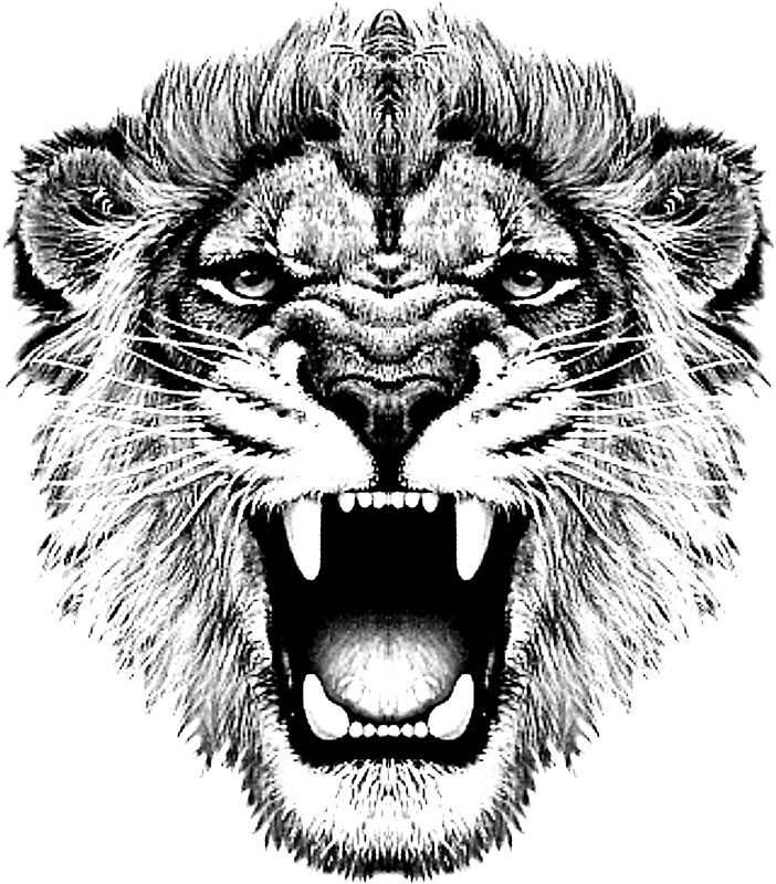 roaring lion t-shirt on lite