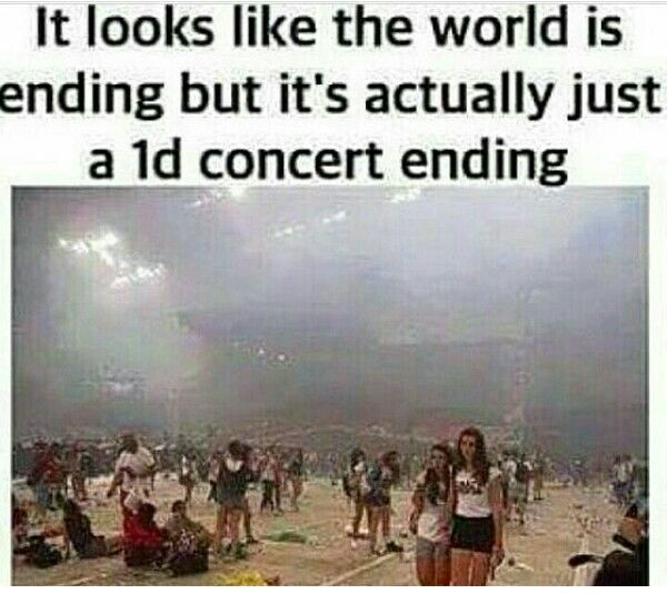 The world is really ending after a 1D concert ends.... its like saying goodbye to your family because you know you'll never see them again
