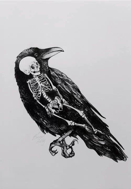 El cuervo significa muerte, y sin saberlo me atrajo