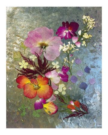 Dried, pressed flowers make beautiful works of art!