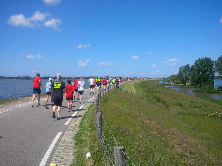 Vandaag naast blauw en groen, een kleurrijke @WFOmringdijk gedurende de #PeterUrsem 10 km loop. Gaaf